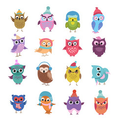 funny winter owls birds cartoon characters vector image