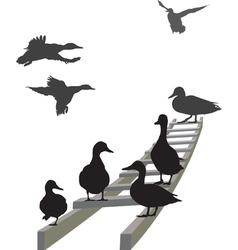 Mallard on a ladder vector