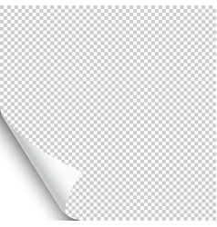 small curled page corner with shadow on vector image