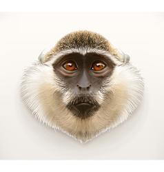 Monkey head realistic vector image
