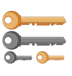 silver and golden keys vector image vector image