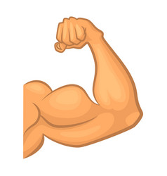 strong biceps gym symbol isolate cartoon vector image vector image