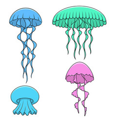 set of color with bright jellyfish vector image vector image