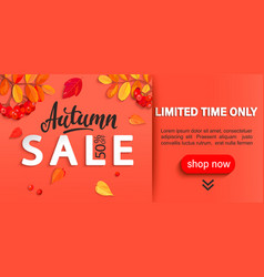 autumn sale banner limited time discounts vector image