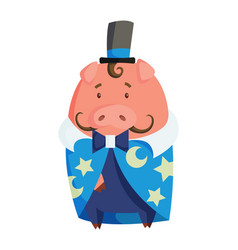 cartoon pig in magicians clothing vector image