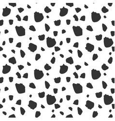 cow skin stains seamless pattern vector image