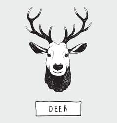 Drawing Deer Head vector image