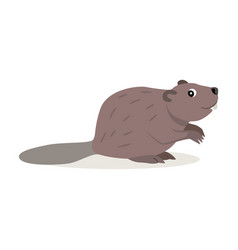 Friendly forest animal cute brown beaver icon vector