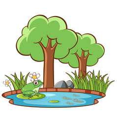 Isolated picture frog pond vector