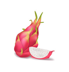 realistic 3d detailed pitahaya with half vector image