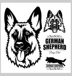 Shepherd dog portrait - on vector