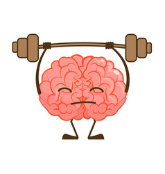 Strong healthy and smart cartoon brain isolated vector