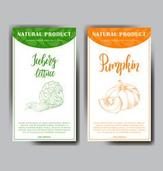 Vegetable food banner iceberg lettuce and pumpkin vector