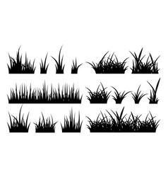 monochrome of grass vector image