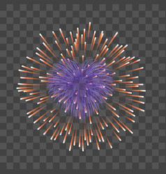 beautiful heart-firework red romantic firework vector image
