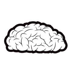 brain mind idea knowledge image outline vector image