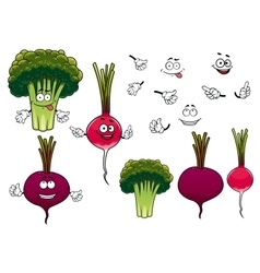 Broccoli radish and beet vegetables vector