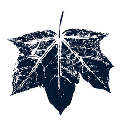 Maple leaf print inkprinted leaves of the vector