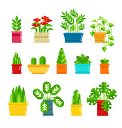 set of houseplants icons in flat design vector image vector image