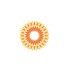Sunflower icon design vector