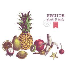 hand drawn juicy fruits colorful border vector image
