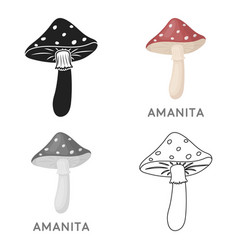 amanita icon in cartoon style isolated on white vector image