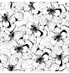 Beautiful Seamless Monochrome Floral Background vector image vector image