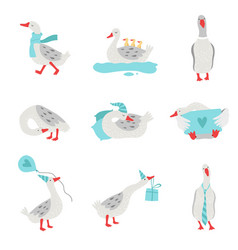 Collection of white geese in different situations vector