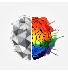 Concept of the human brain vector