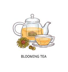 Herbal tea types concept blooming tea sketch vector