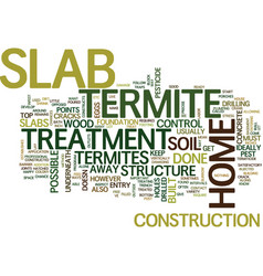 Termite treatment slab text background word cloud vector