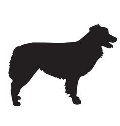 Australian shepherd silhouette vector