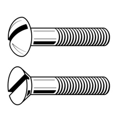 vector illustration of screws vector image