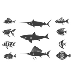 Grey fish silhouettes set vector image