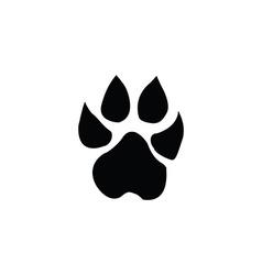lion footprint vector image vector image