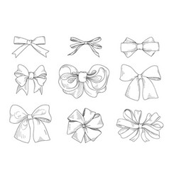 bow set fashion accessory sign holiday gifts vector image