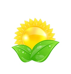 Eco friendly icon with sun and green leaves vector