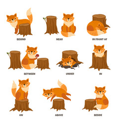 English prepositions cartoon animal learn place vector