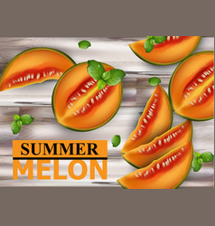 melon fruits on wooden background summer vector image