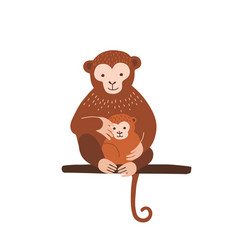 Monkey with baby sitting on tree branch isolated vector