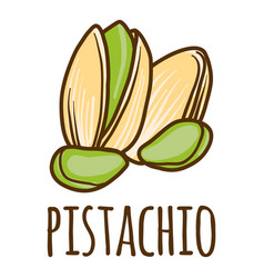 Pistachio icon hand drawn style vector