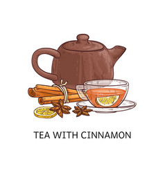 spicy tea type tea with cinnamon sketch vector image