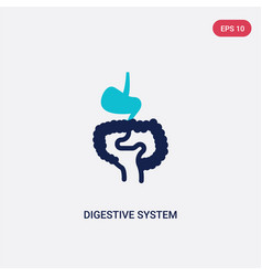 Two color digestive system icon from human body vector