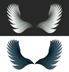 Angel wings black and white fantasy decoration vector image