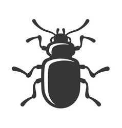 beetle insect icon on white background vector image