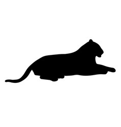 black silhouette of lying tiger on white vector image