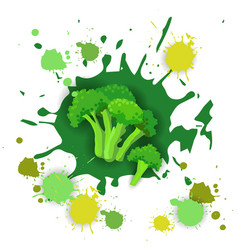 Broccoli vegetable logo watercolor splash design vector