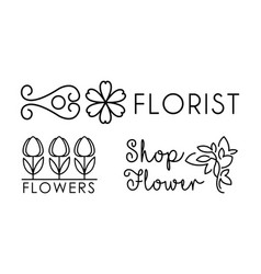 flower shop linear logo floral design elements vector image