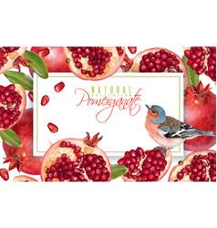 Pomegranate bird horizontal banner vector