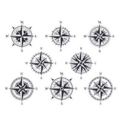wind rose vintage compass with north south and vector image